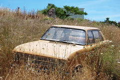 The abandoned and immobile car standing in grass Royalty Free Stock Image