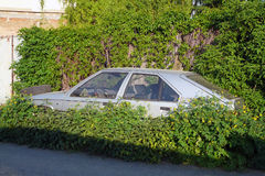 The abandoned and immobile car standing in the weeds Stock Photography