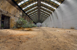 Abandoned industrial interior with bright light. And some plants Stock Photography