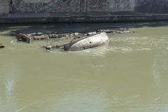 Abandoned inverted boat in the river Tiber. Green river Tiber stock image