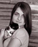 Abandoned kitten Stock Image