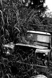 Abandoned Landrover in Cameron Highlands, Malaysia Royalty Free Stock Photography