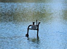 Abandoned Lifeguard`s Chair Sinking into the Lake stock photography