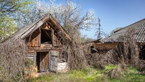Abandoned villages in Belarus Chernobyl exclusion zone royalty free stock photography