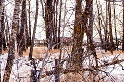 Abandoned Livestock feeding Shed. Abandoned barn on Canadian Farmland during winter Royalty Free Stock Photos