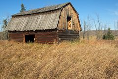 Abandoned log barn in grassy field Royalty Free Stock Images