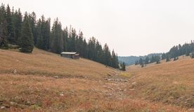 Abandoned log cabin in the Central Rocky Mountains of Montana U S A royalty free stock images
