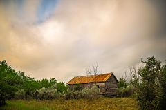 Abandoned log cabin house deep woods in texas. Abandoned log cabin house deep woods in  texas Royalty Free Stock Photography