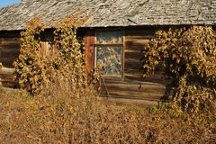 Abandoned log house Detail of wall and window Royalty Free Stock Photo