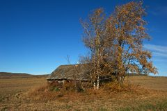 Abandoned log house in fall Royalty Free Stock Images