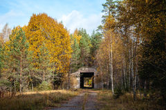 Abandoned military site - air base in the forest Royalty Free Stock Images