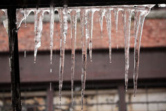 Abandoned mill. Icicles on the window of an abandoned home entertainment systems manufacturing mill in Connecticut Royalty Free Stock Image