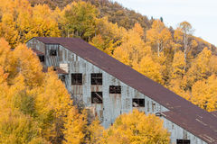 Abandoned Mine in Aspen Grove with Yellow Leaves Royalty Free Stock Photography
