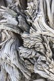 Texture of burnt wood, Rio Tinto royalty free stock photos