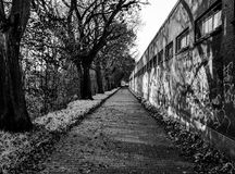 Abandoned mysterious path in a park during winter. Monochrome ph. Oto stock illustration