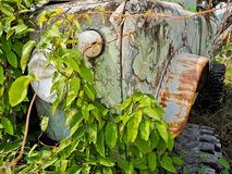 The abandoned off-road vehicles vehicles are covered with vines. stock photography