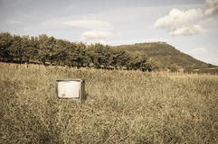 Abandoned old or antique tv in the grass field Royalty Free Stock Photos
