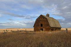 Abandoned old barn in fall. An abandoned wooden barn surrounded by dry dead grass and an old fence. Harvested grain field in the background. Image taken in the royalty free stock photos
