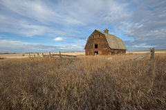 Abandoned old barn in grassy field in fall. An abandoned wooden barn surrounded by dry dead grass and an old fence. Harvested grain field in the background royalty free stock photo
