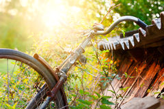 Abandoned old bike at sunset Royalty Free Stock Photos
