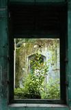 Abandoned old building. Window of abandoned old building Royalty Free Stock Photos