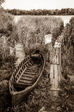 Abandoned old fishing boat in the reed Royalty Free Stock Photo