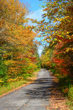 Abandoned old highway in autumn landscape Stock Photography