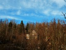 An abandoned old house hidden among the trees of spruce and beech, a forest idyll of unspoiled nature. Blu sky,my home.Beautiful blu,torquise sky,autumn stock photography