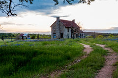 Abandoned Old House in Texas Wildflowers. Stock Photo