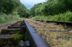 Old overgrown disused railway tracks. royalty free stock photos