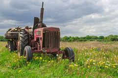 Abandoned Old Red Farm Tractor in Meadow Stock Image