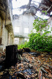 Abandoned Old Ruined Industrial Plant Stock Photography