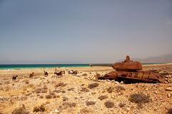 Abandoned old rusty tank on the shore of the island. Socotra. Yemen stock image