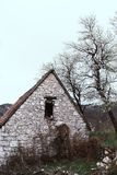 Abandoned old stone rural house. Village house. Derelict haunted stone house and dirt road in the woods. Tree white blossom. Historic, countryside, building stock photography