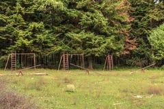 Abandoned old swing Royalty Free Stock Image