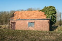 Abandoned and overgrown old shed. Built of brick and with an orange tile roof. It is a sunny day at the end of the Dutch winter season Royalty Free Stock Photos