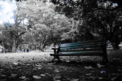 Abandoned, nature,editorial,wait,table,tree Royalty Free Stock Photo
