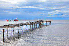 Old dilapidated pier in the Strait of Magellan Stock Photography