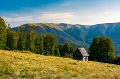 Abandoned place in mountains. Herd shed on a grassy hillside near the forest. abandoned place in mountains. lovely afternoon landscape Stock Photo