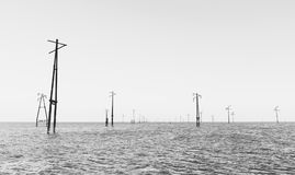 Abandoned power lines. In sea Royalty Free Stock Photo