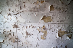 Abandoned prison, Patarei in Tallinn, Estonia Royalty Free Stock Image