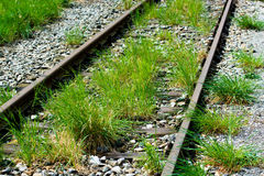 Abandoned Rail Tracks With Grass Royalty Free Stock Photos