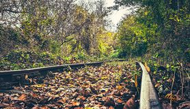 Abandoned railroad in autumn. Close view stock photography