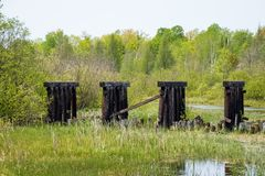 Abandoned railroad bridge beams in the Northwoods of Hayward, WI. During spring royalty free stock image