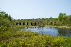 Abandoned railroad bridge crossing Mosquito Brook in the Northwoods of Hayward. WI royalty free stock image