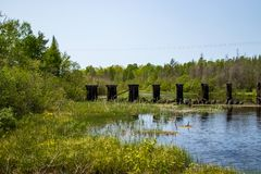 Abandoned railroad bridge located in Mosquito Brook near Hayward, WI. During spring stock photos