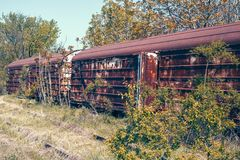 Abandoned railroad cars. Used for cargo transportation standing on old railroad tracks with vegetation grow around them royalty free stock photography