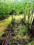 Abandoned railroad covered in green. Trees, beautiful, peaceful, bliss royalty free stock photos