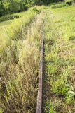 Abandoned Railroad Tracks. Covered by grass and weeds royalty free stock images