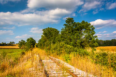 Abandoned railroad tracks in rural York County, Pennsylvania. Royalty Free Stock Image